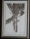Наум Наумов - Дървета